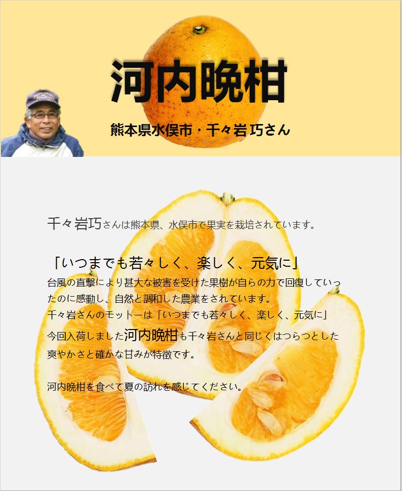 河地晩柑-広告