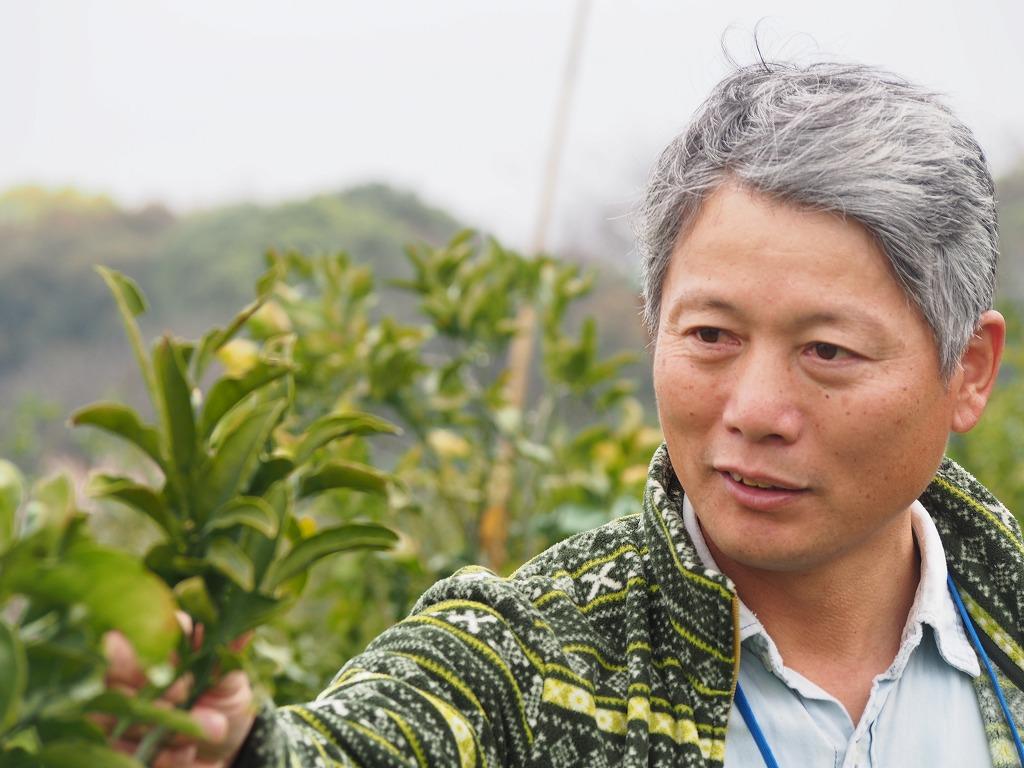 九州熊本県池田さんの無肥料・無農薬・自然栽培清見オレンジ