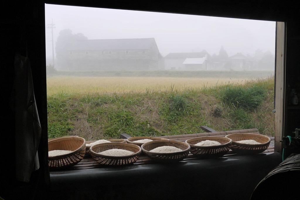 九州球磨地方無肥料・無農薬・自然栽培九州