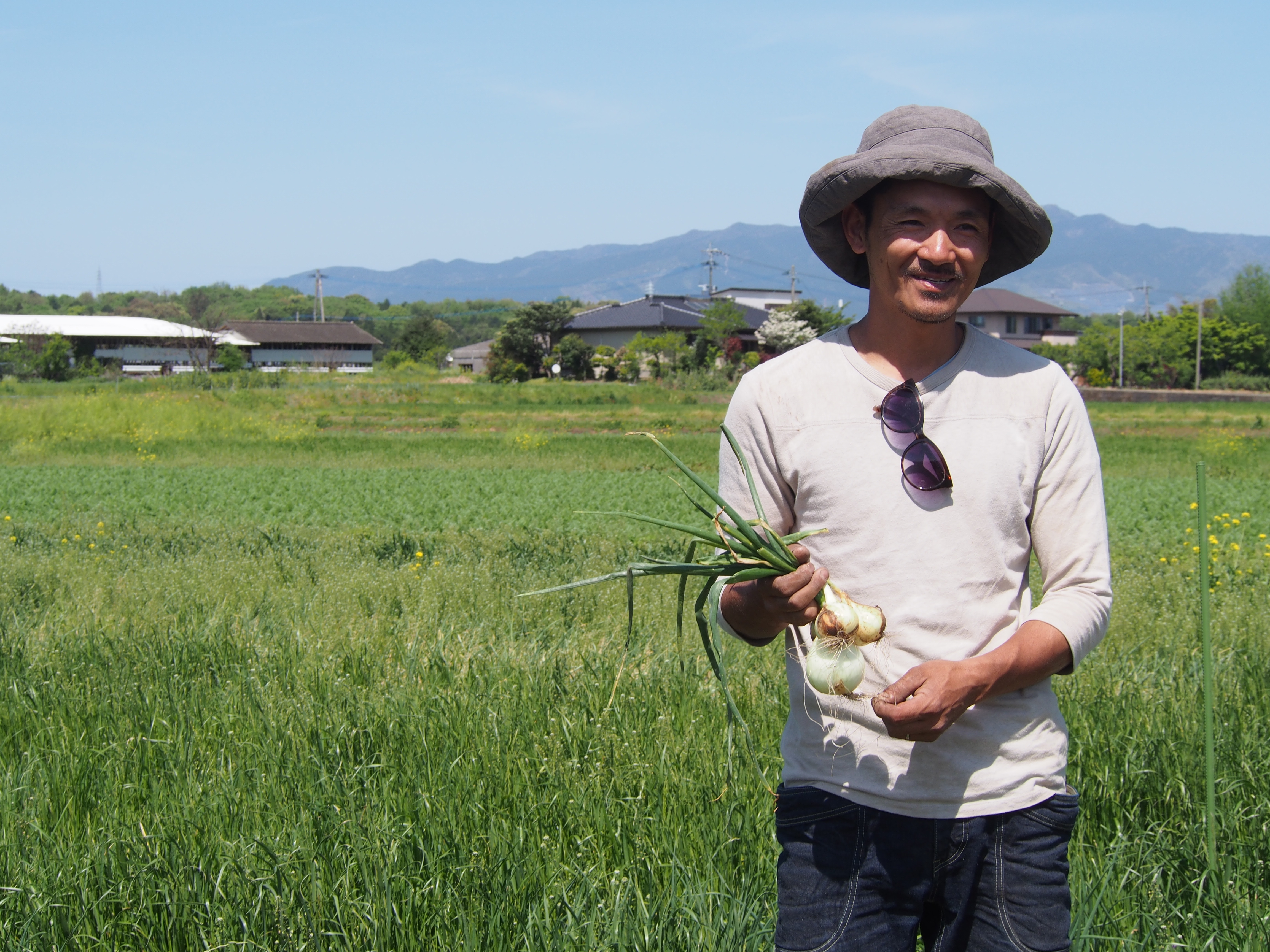 上野さん自然栽培玉ねぎ
