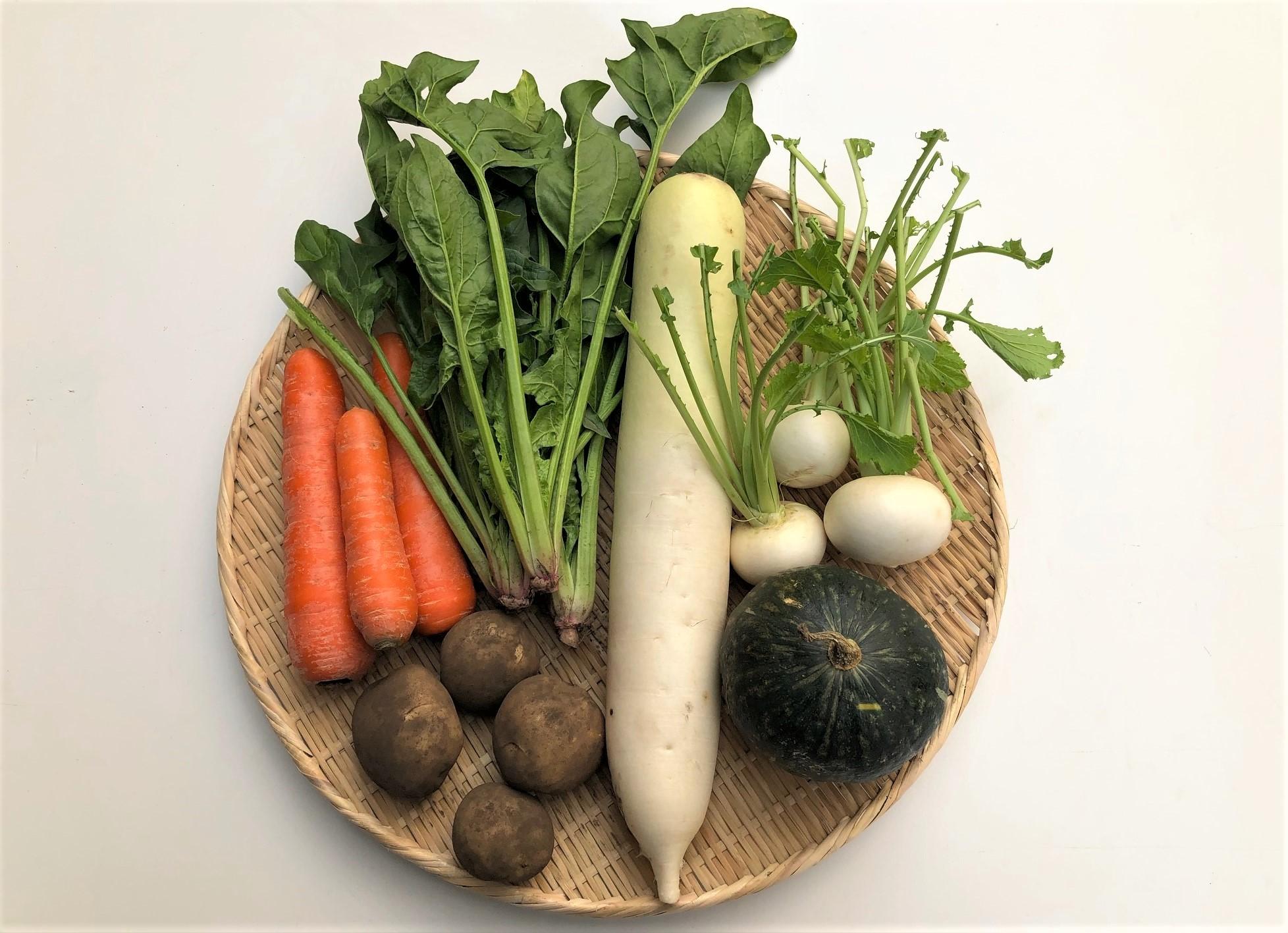 九州産自然栽培お野菜のお試しセット