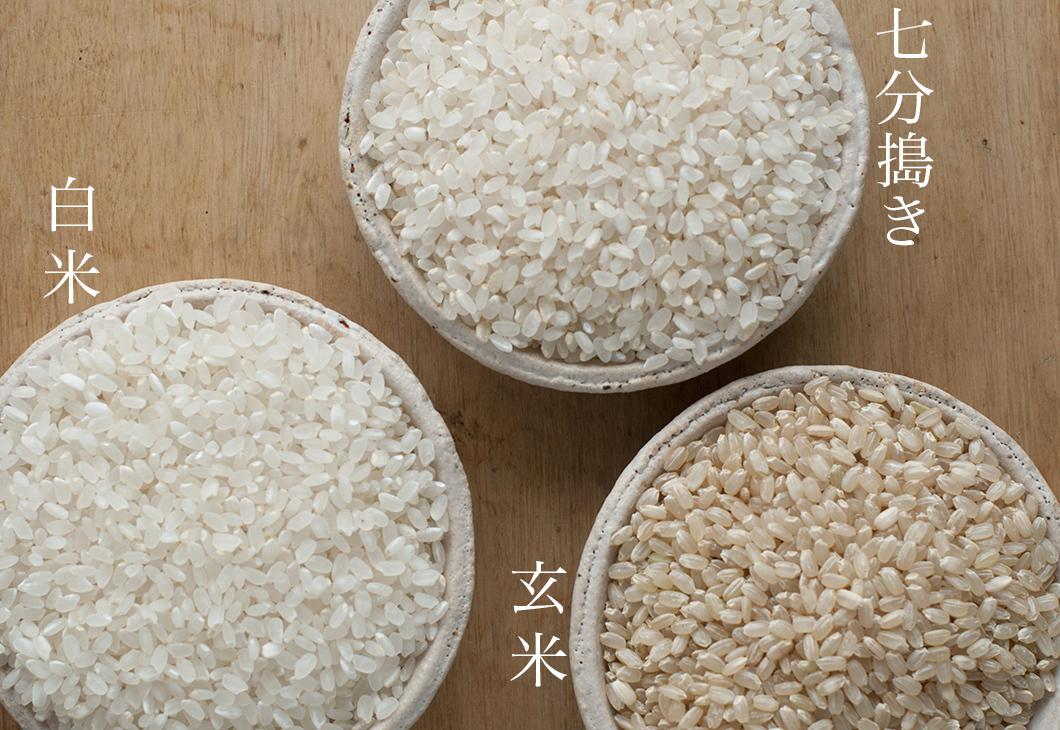 特別価格20%OFF 【2020年産(令和二年度)】自然栽培米